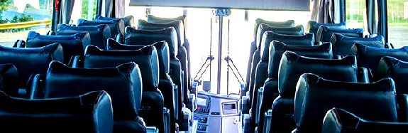 Limousine Services LARGE COACH 2