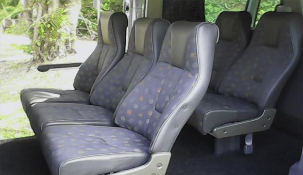Limousine Services Mercedes Vito/Viano (9 Seater) 3